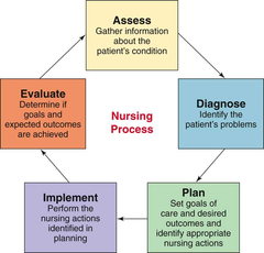The Nursing Process Is A Scientific Method Used By Nurses To Ensure The Quality Of Patient Care This Approach C Nursing Process Nursing School Clinicals Nurse