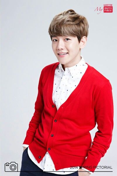 http://www.exonesia.net/2014/03/26/pics-official-exo-for-lotte-duty-free-endorsement-8p/