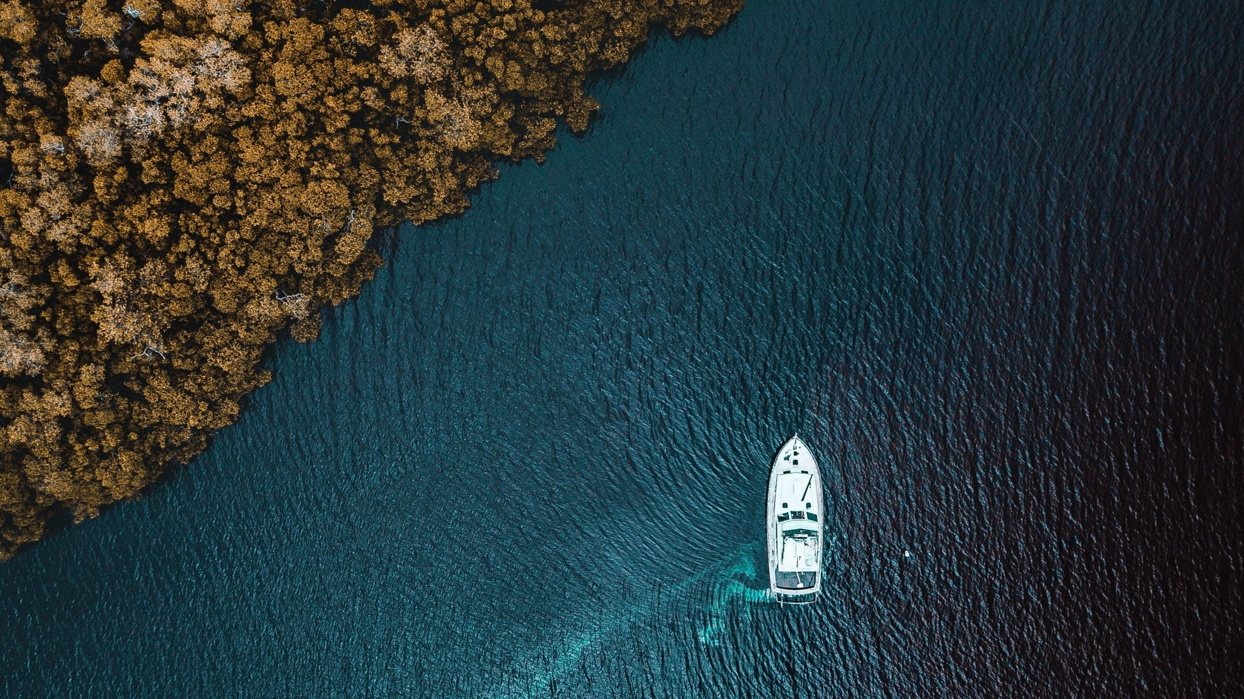 Aerial Sea Boat Vehicle Water Trees Drone Photo Top View Aerial View Forest 2k Wallpaper Hdwallpaper Deskto Hd Wallpaper Drone Photos View Wallpaper Wallpaper coast aerial view sea boat