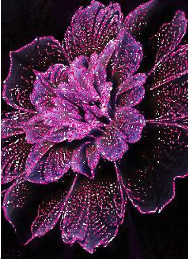 Flower Diamond Painting Kit - DIY Flower-64