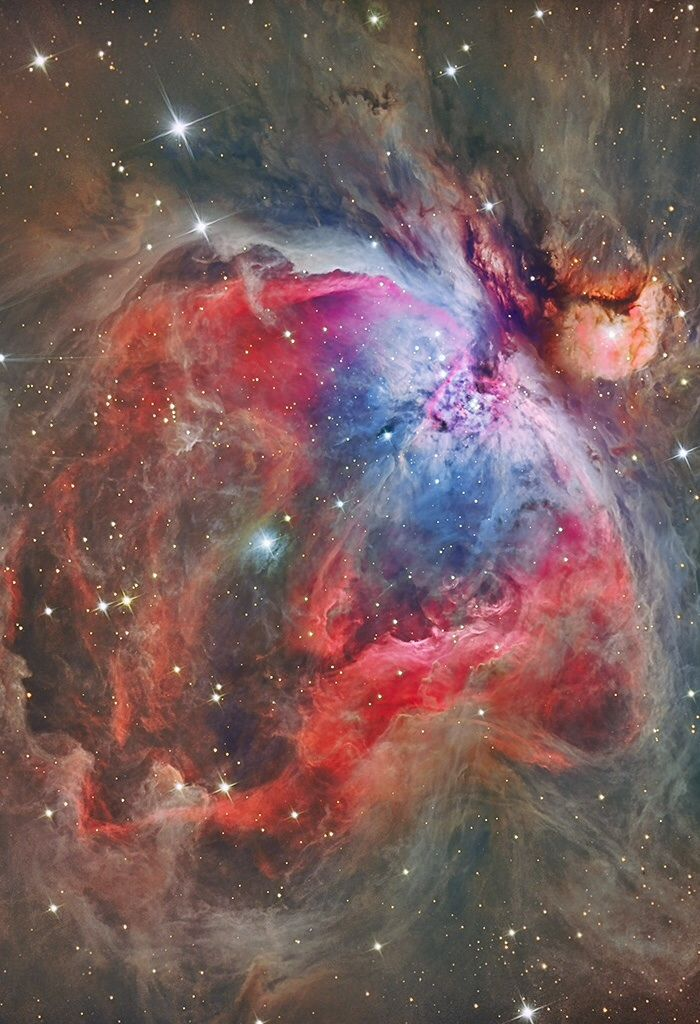 Inside, The Great Nebula in Orion, an immense, nearby starbirth region, is probably the most famous of all astronomical nebulas. read more:
