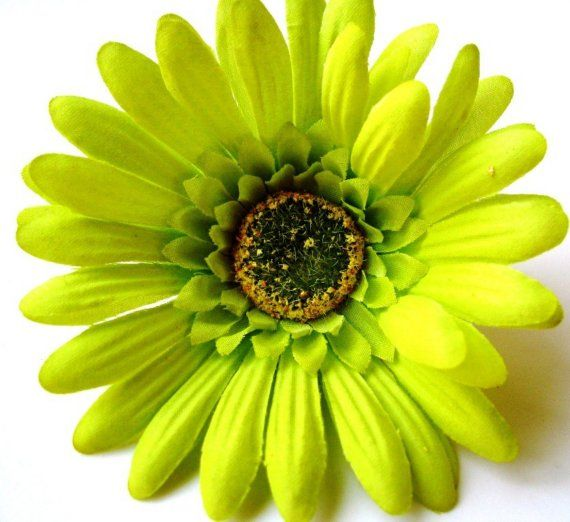 Lime Gerbera Clip Etsy Flowers In Hair Green Nightmare Before Christmas Tattoo
