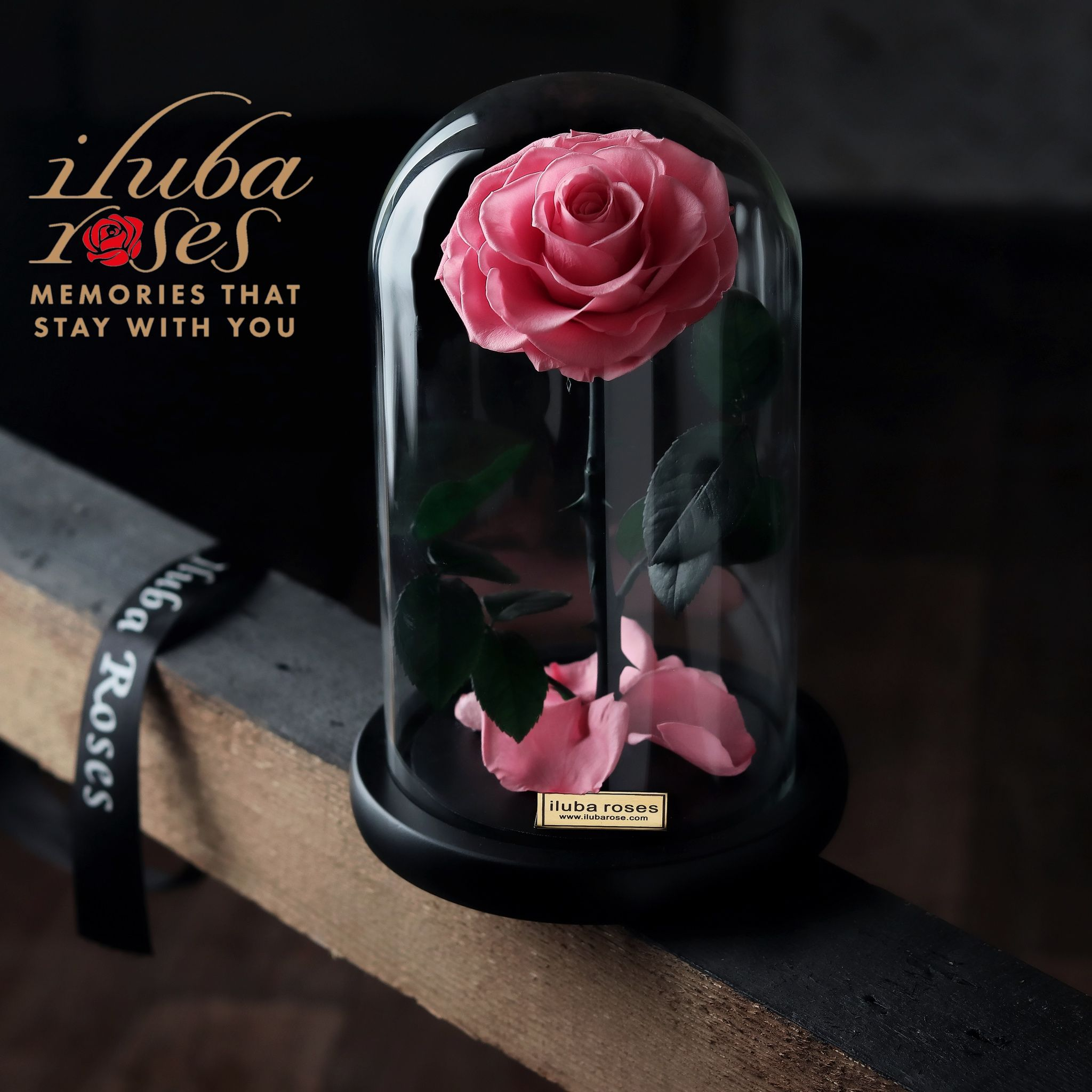 Iluba Roses ايلوبا روزز Gifts Rose In A Glass Pink Rose Flower