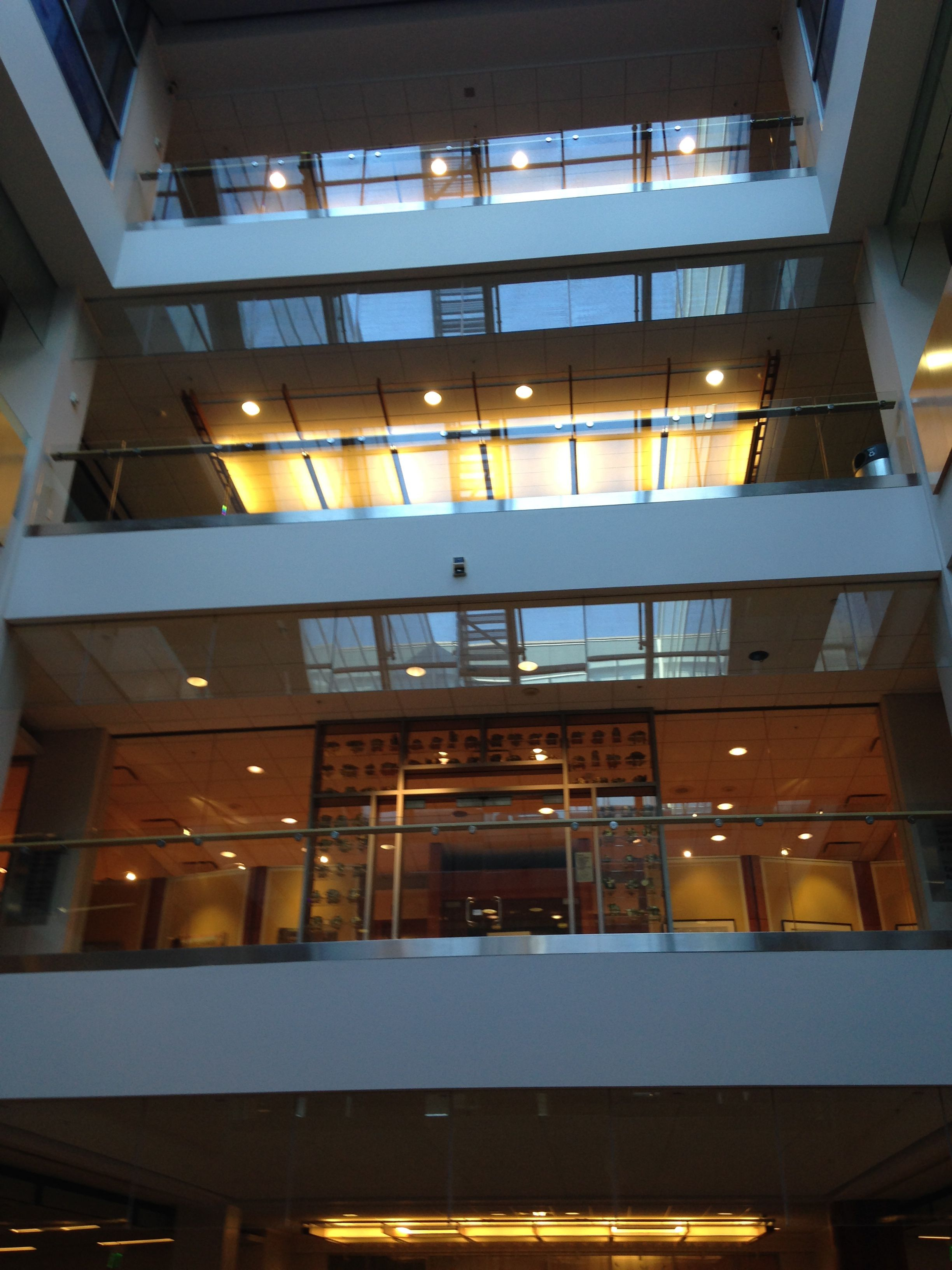 Looking up to Special Collections on the Fifth Floor.