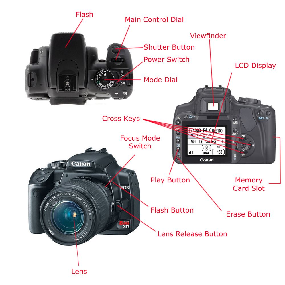 slr camera diagram where is my liver located parts photo tips tricks photography