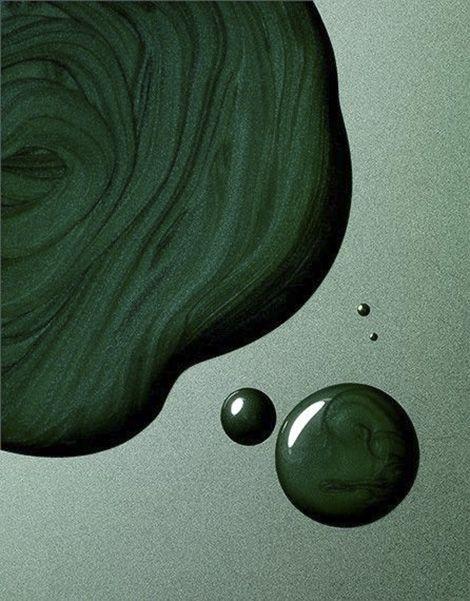 Atelier Franck Durand Couleur Vert Nuances De Vert Fond D Ecran Vert