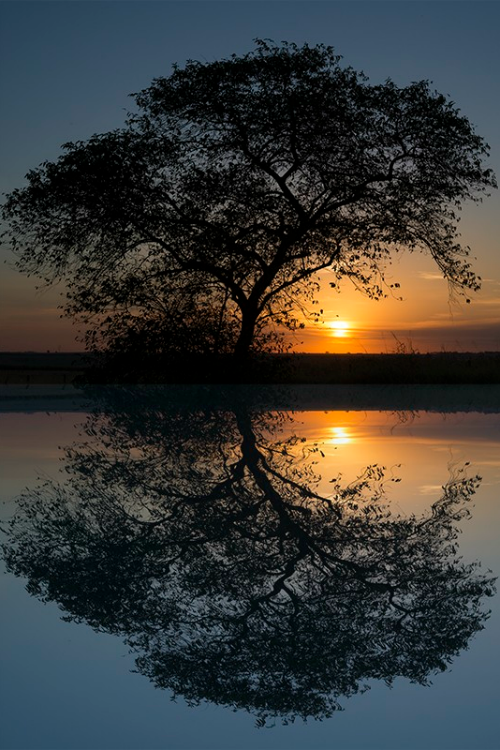 A sunset by Enzo Davide