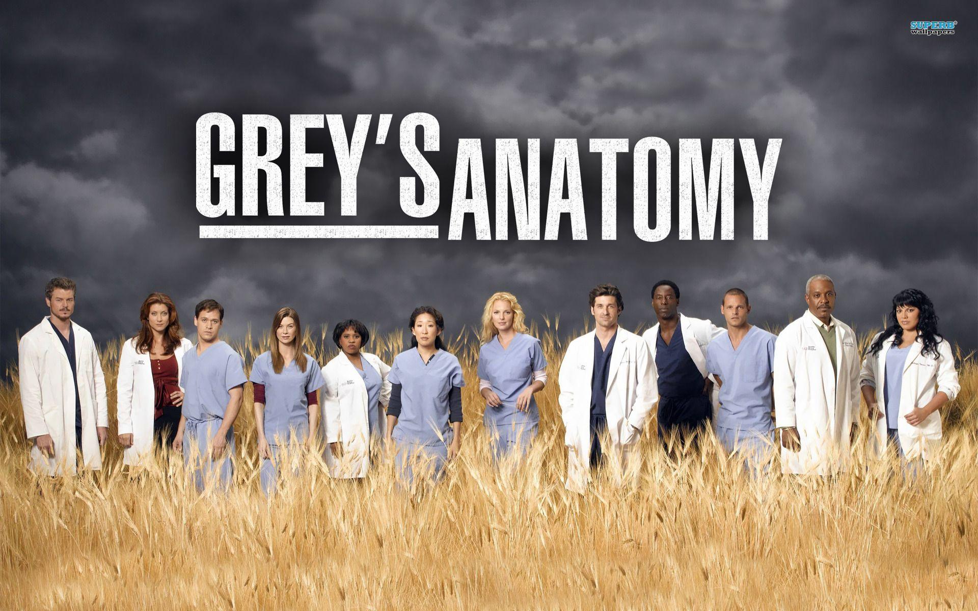 Assisti Grey S Anatomy Dublado E Legendado Online Grey S Anatomy