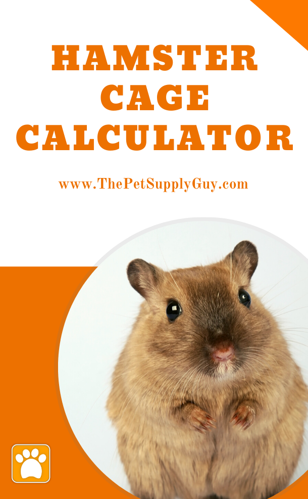 Hamster Cage Size Calculator The Pet Supply Guy In 2020 Hamster Care Hamster Dwarf Hamster Care