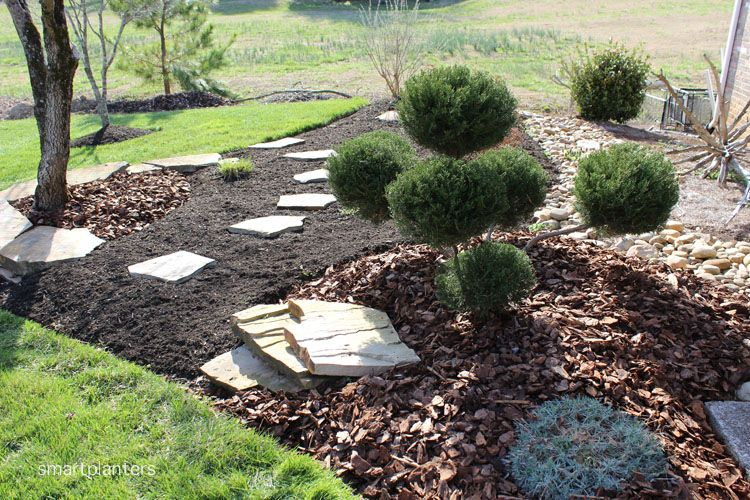 A Simple Way To Create A Dynamic Appeal To Your Landscape Is By