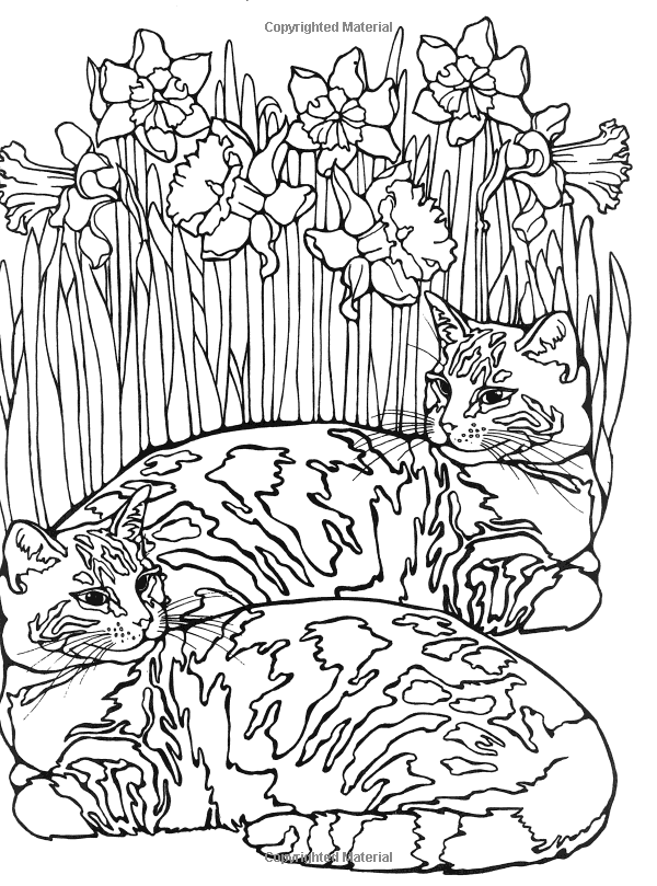 Designs for coloring cats ruth heller 9780448031484 amazon com books