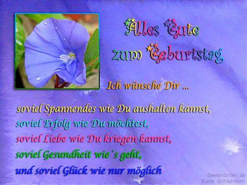 Digitale Postkarten Von Seelenfarben Plants