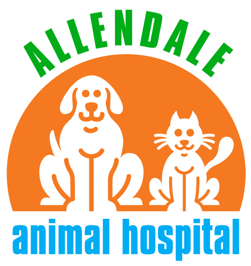 Allendale Animal Hospital Nj With Images Veterinary Hospital