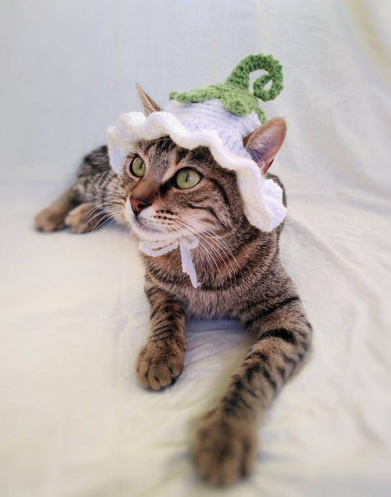 Flower Fairy Hat For Cat Flower Pet Costume Halloween Pixie Fairy Kitten Outfit Cat Accessories Gift For Cat Lover Halloween Pet Costume In 2021 Hat For Cat Cat Outfits Pets Pet Costumes