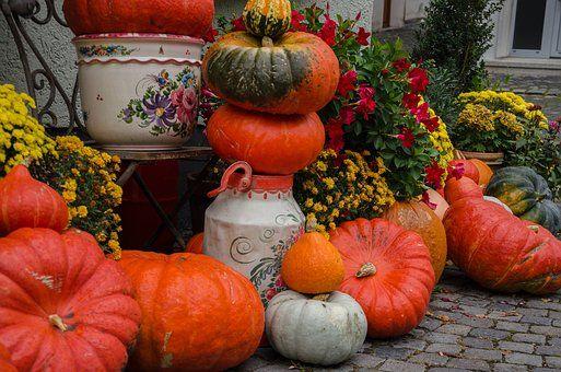Herbst Kurbisse Dekoration Ernte Herbst Pinterest