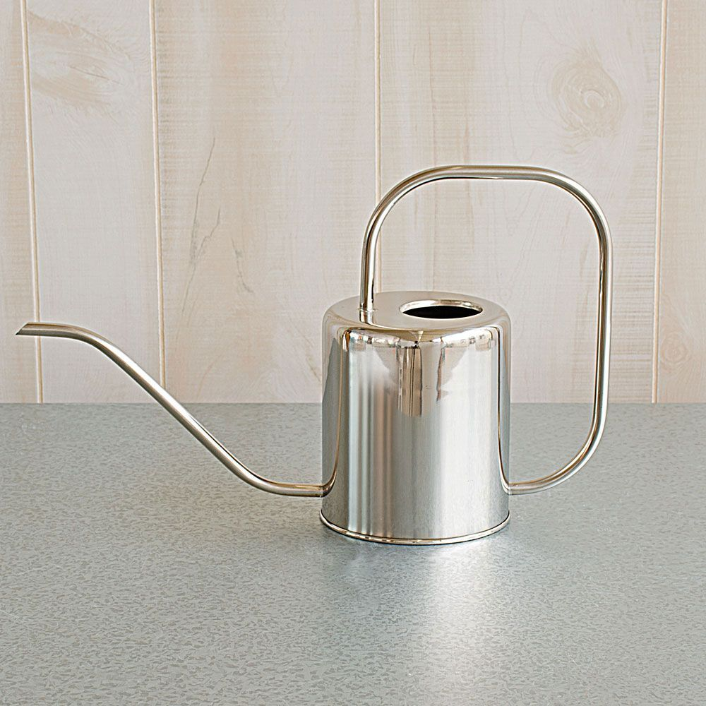 Stainless Steel Watering Can With Images Watering Can White