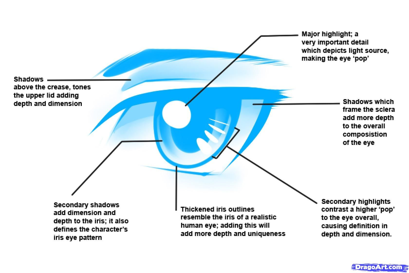 How to Draw Anime Male Eyes Step by Step Anime Eyes Anime Draw
