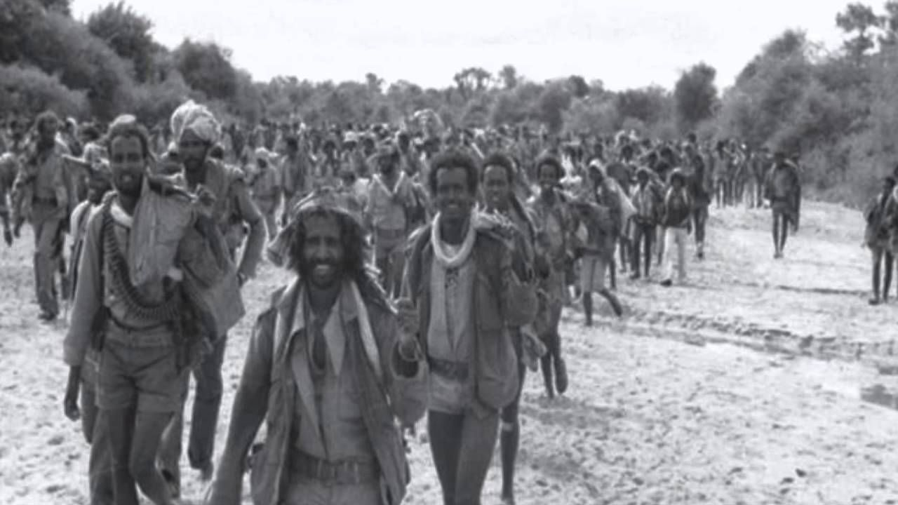 A Tribute To Our Eritrean Martyrs Sala Jeganu Eritrean Martyrs Day Martyrs