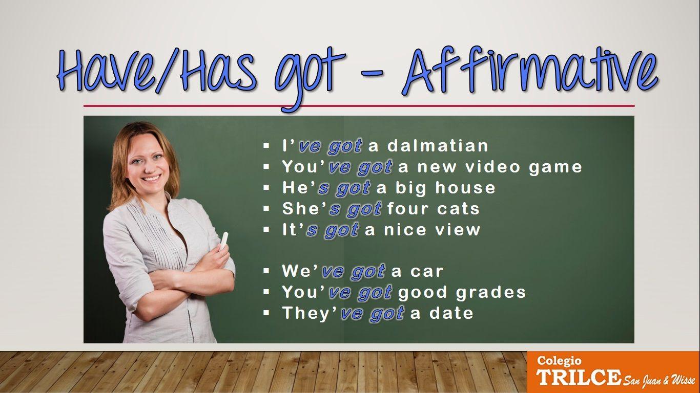 Have Got Has Got Englishgrammar
