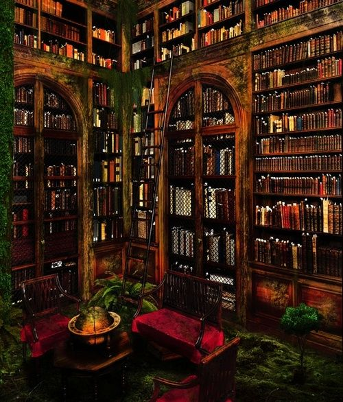 a bit too gothic for my tastes but still magical none the less magical libraries pinterest. Black Bedroom Furniture Sets. Home Design Ideas