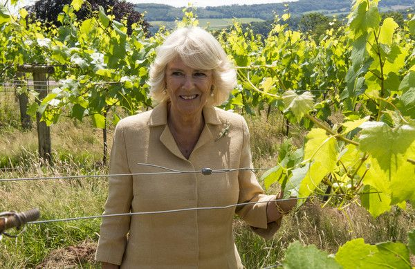 Camilla Parker Bowles Photos - The Prince of Wales & Duchess of Cornwall Visit Wales - Day 4 - Zimbio