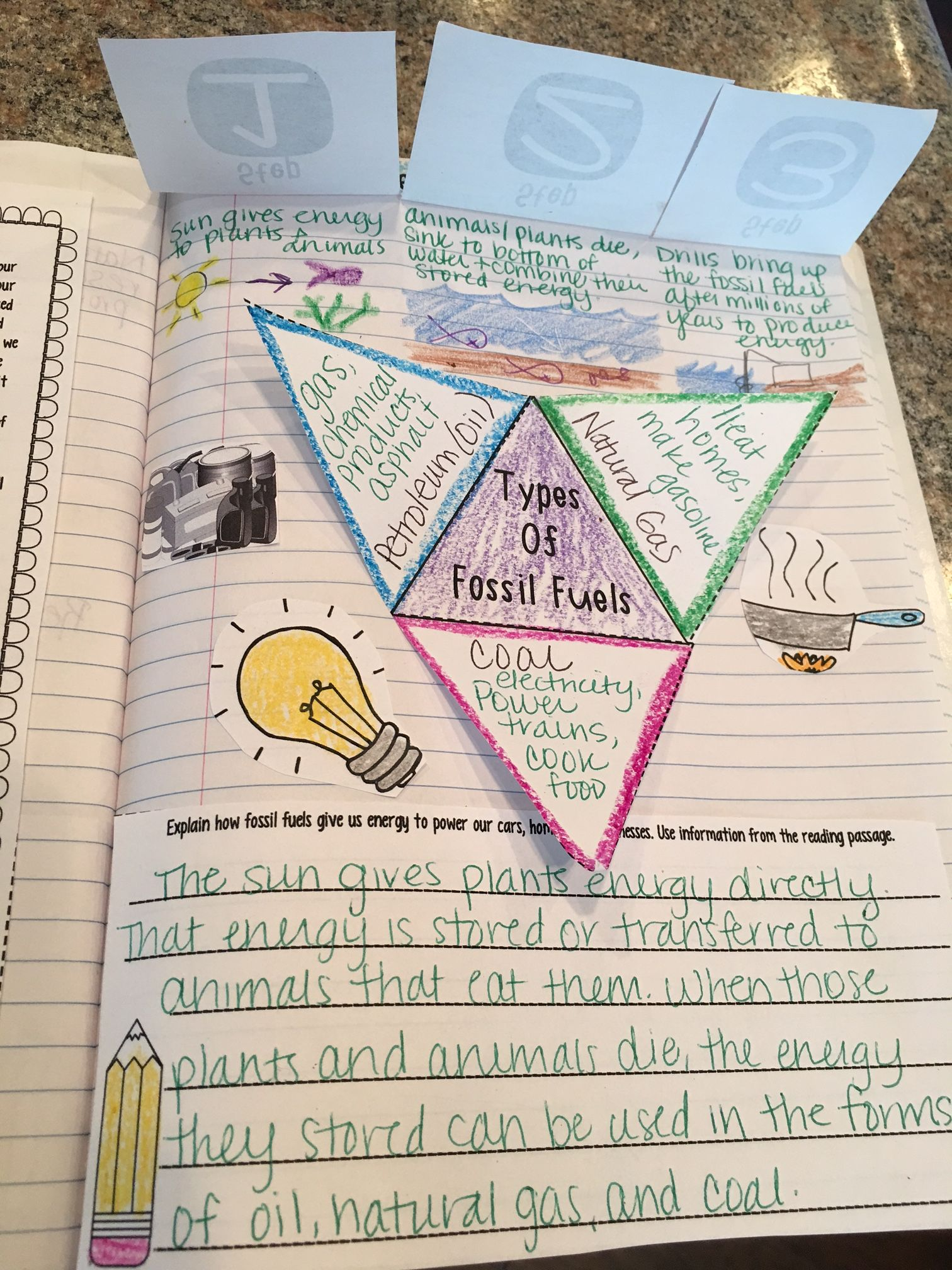 Environmental Science Read And Apply Interactive Notebook