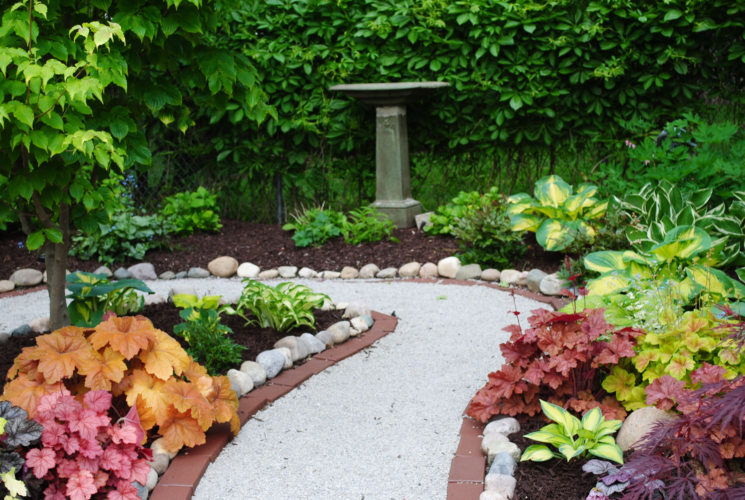 excellent path with lots of heuchera