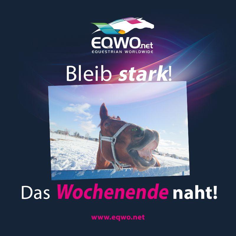Www.eqwo.net Bleib Stark! Das Wochenende Naht! #weekend #wochenende