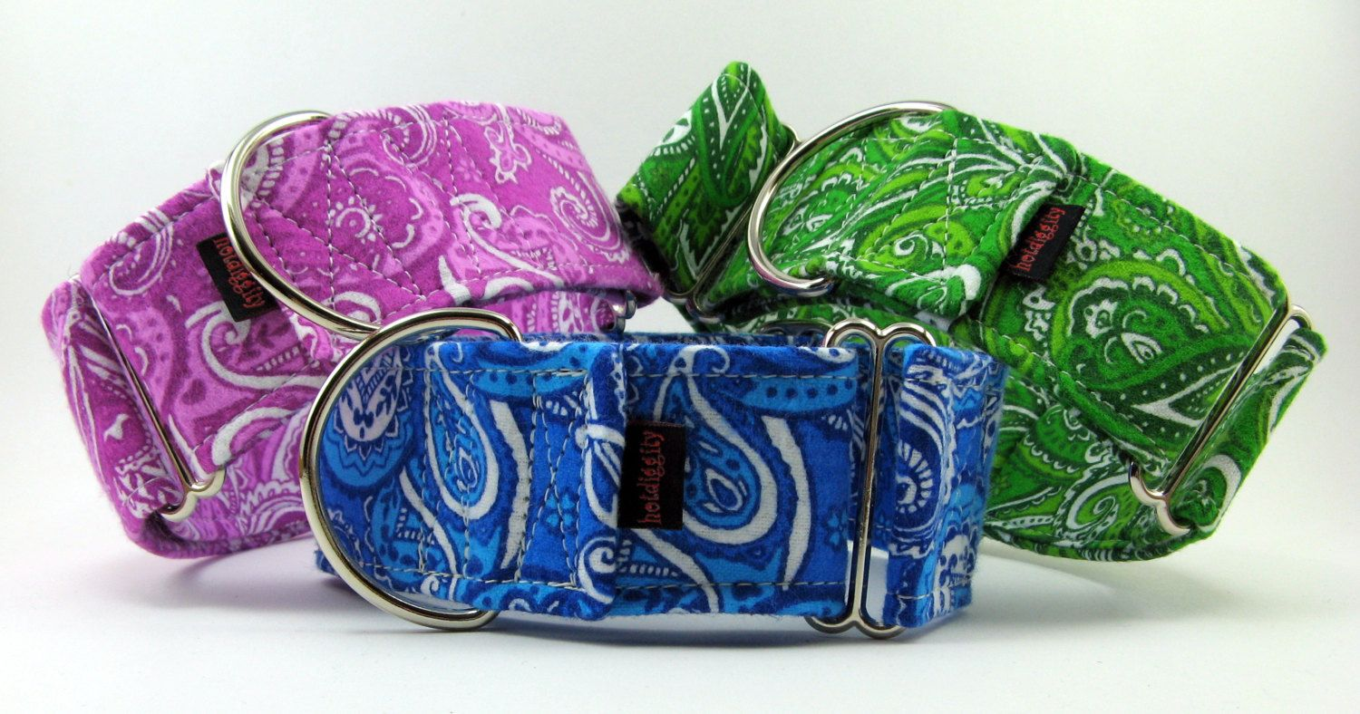 Paisley flannel martingale collar colorful flannel martingale