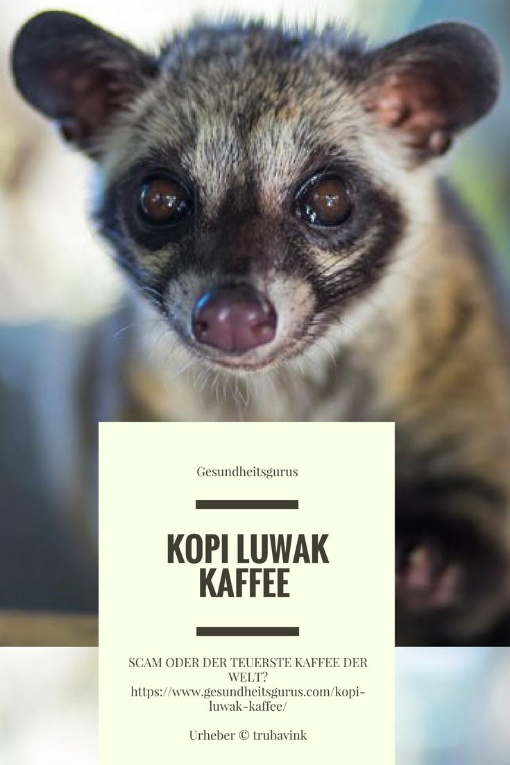 teuerster kaffee der welt
