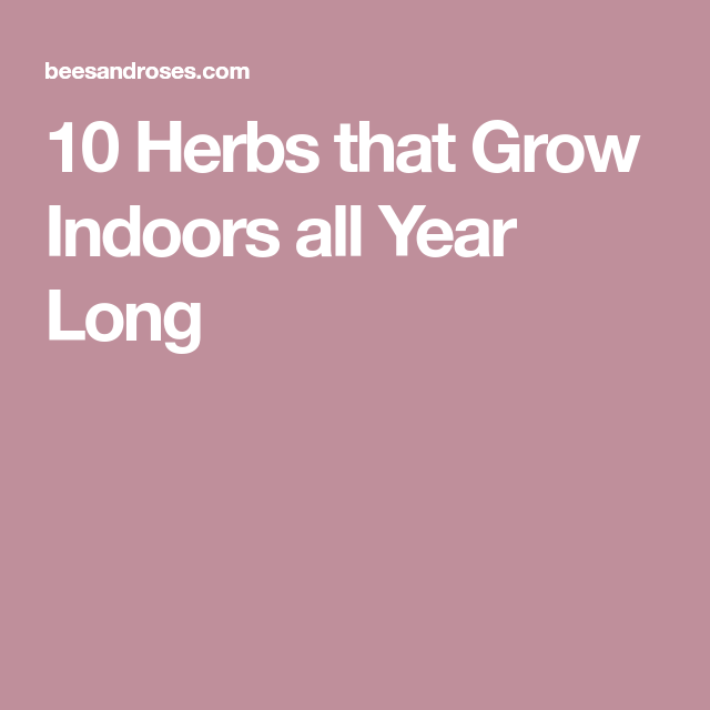 10 Herbs That Grow Indoors All Year Long Herbs Fast 400 x 300
