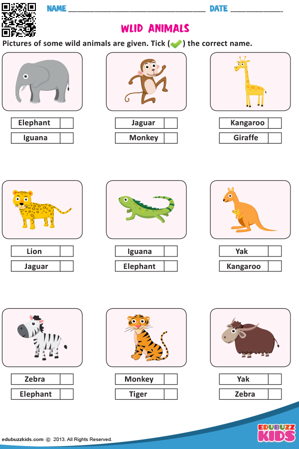 WILD ANIMALS Worksheets For Kids, English Worksheets For Kids, English  Activities For Kids