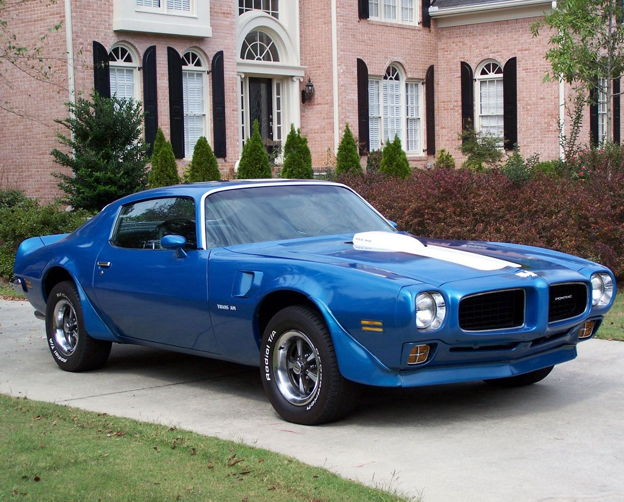 1971 Pontiac Trans Am Bluebird #cars #musclecars | Muscle