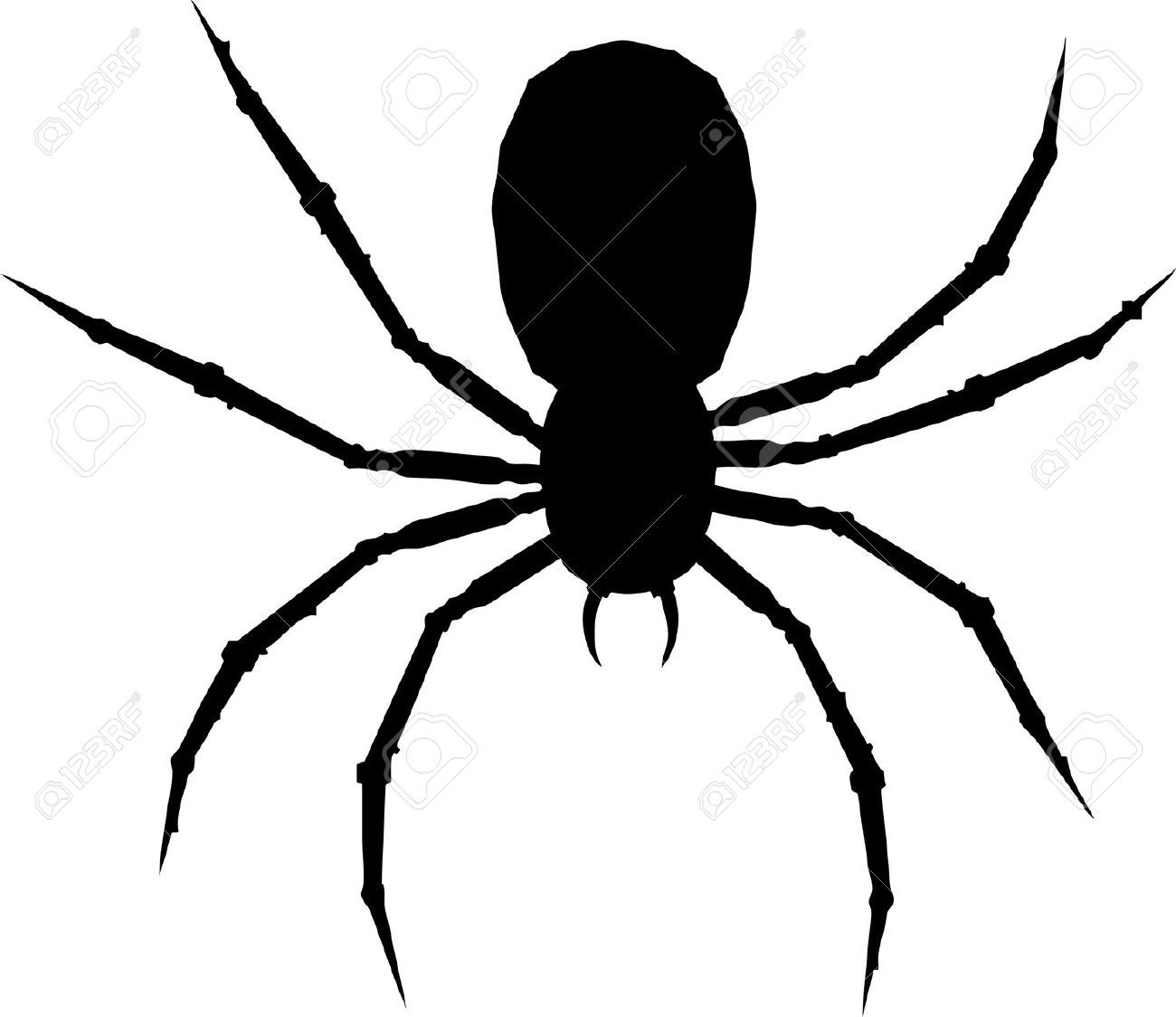 5757937-One-arachnid-isolated-on-white-background--Stock ...