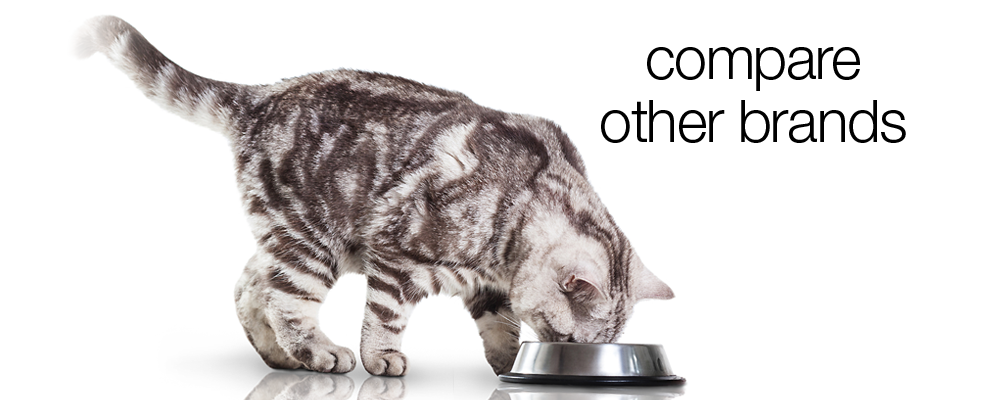 Our Brand Ranks High At A Lower Cost Per Serving Cat Insurance Cat Illnesses Cat Feeding