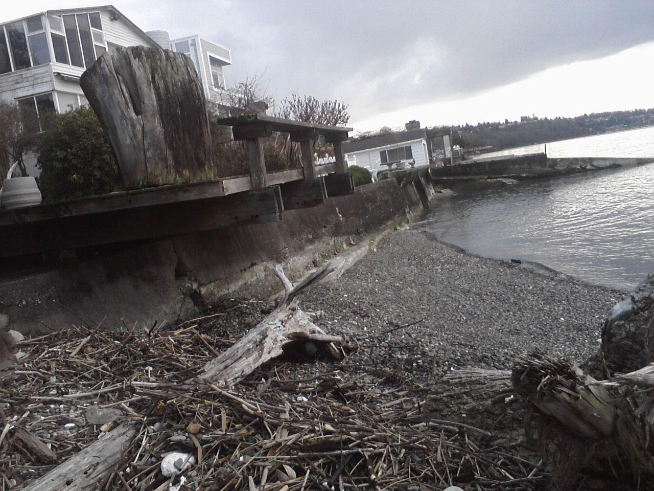 wa Day island tacoma