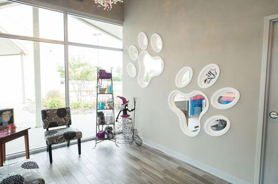 Dog Grooming Salon Decorating Ideas Buscar Con Google Grooming