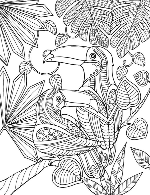 farbenky | Ausmalbilder/Windowcolor | Pinterest | Ausmalbilder ...