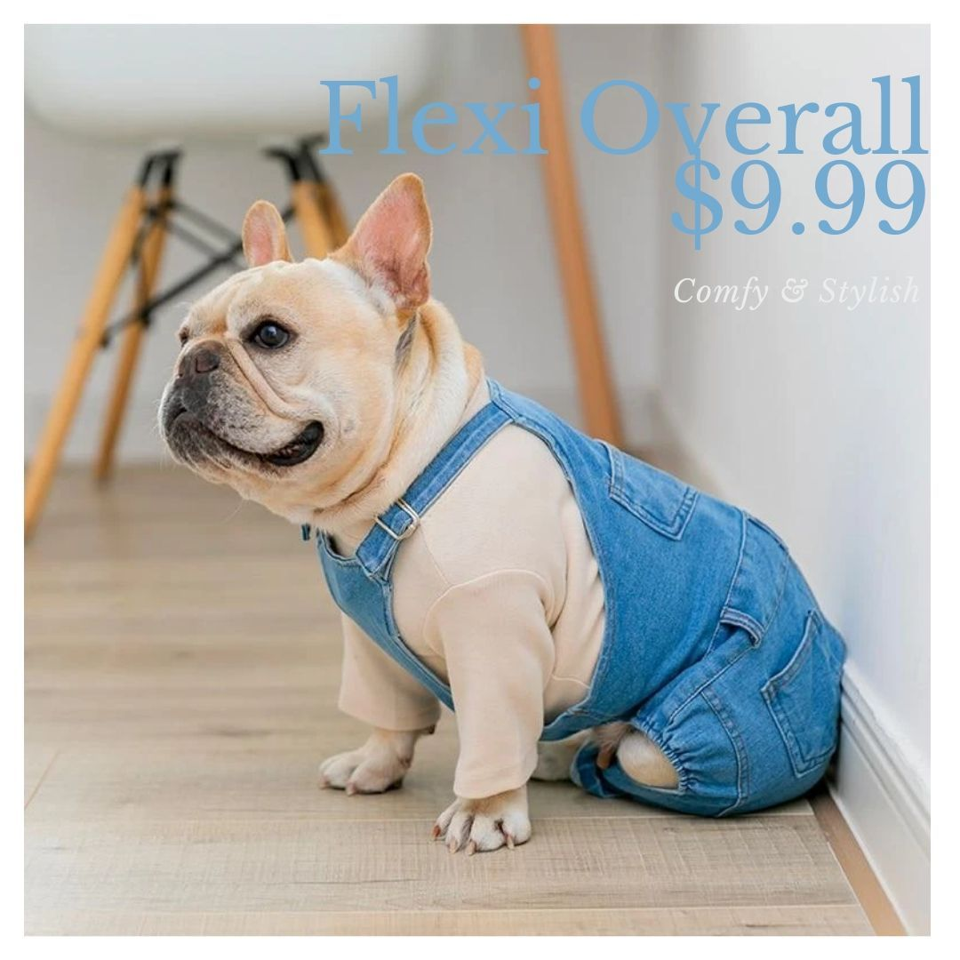 Dog Denim Dungarees Adjustable Overall in 2020 French