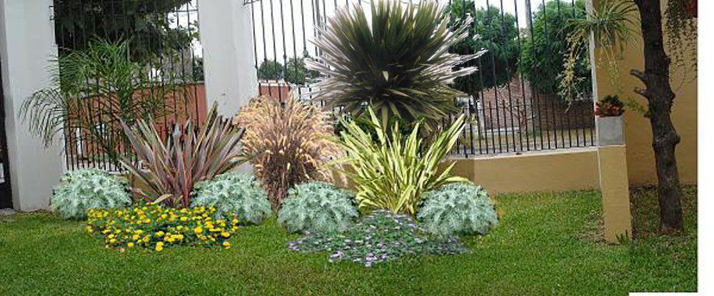 Arbustos peque os para jardin buscar con google for Arbustos para patios