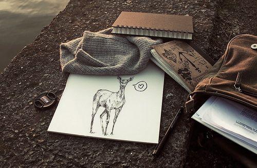 Appunti e disegni
