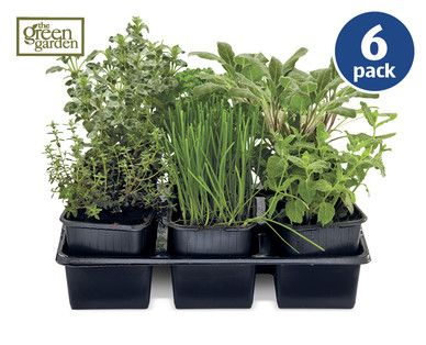 Herb Collection Herbs Garden Online Plants 640 x 480