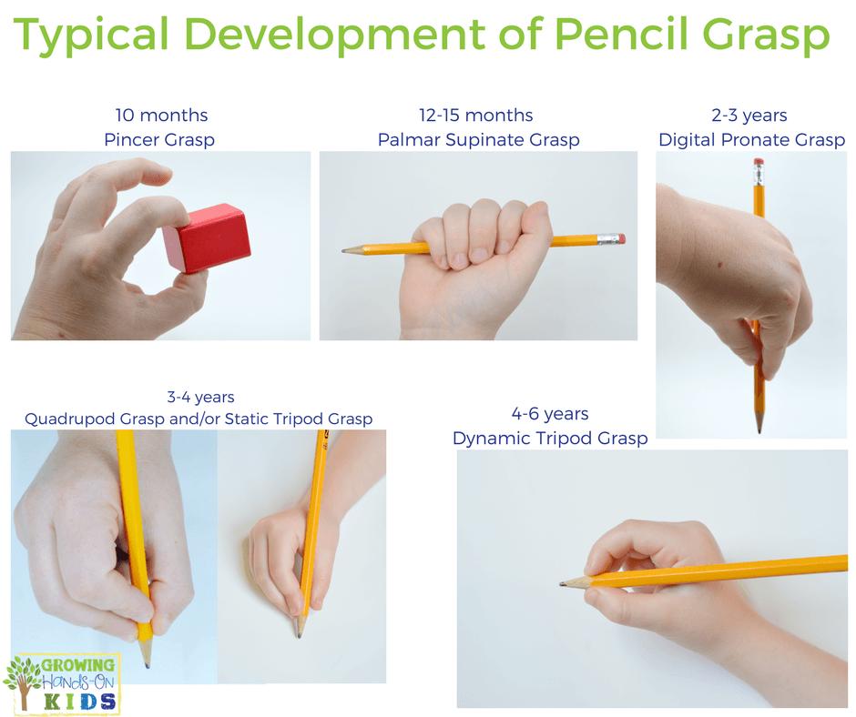 Typical Pencil Grasp Development For Kids Classrom Ideas