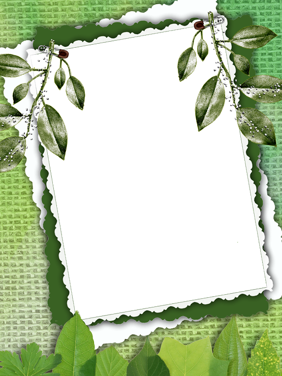 Marco con hojas verdes frame pinterest - Marcos para plantas ...