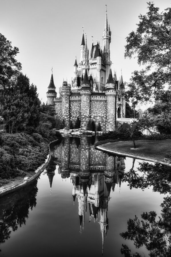 Some day my Prince will come by Gilmar Smith, via 500px