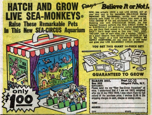 "We love these 1960s advertisements for SeaMonkeys! ""Sea"