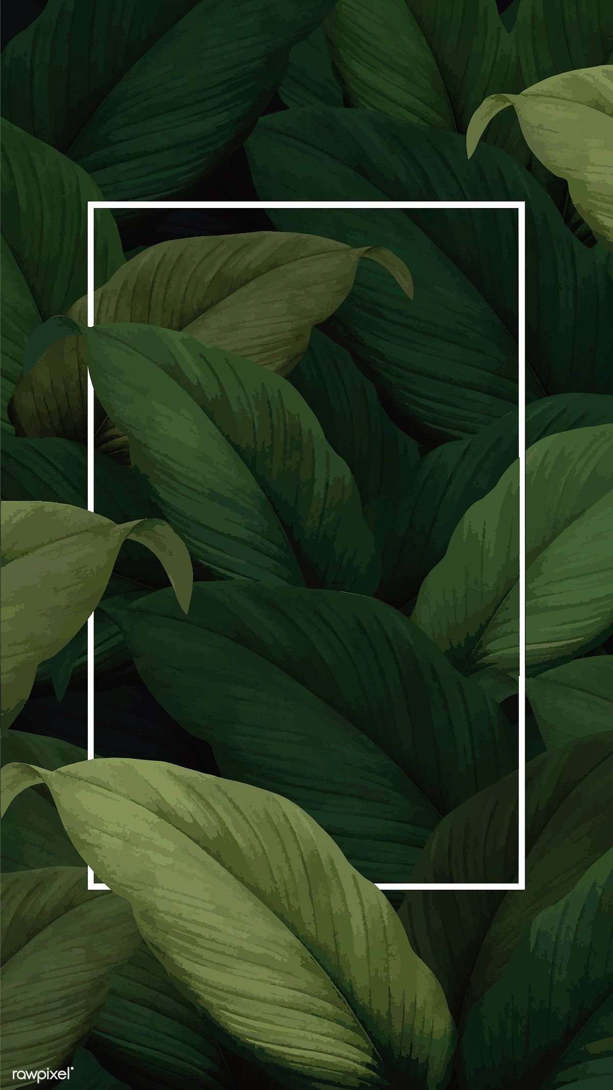 Green Tropical Leaves Patterned Poster Vector 4k Iphone And Mobile Phone Wallpaper Premium Image B Tropical Leaves Pattern Tropical Leaves Instagram Pattern