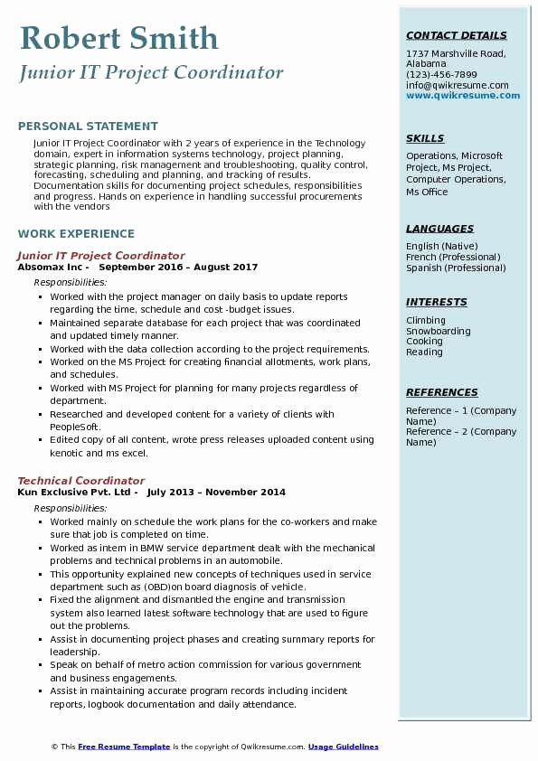 Entry Level Project Coordinator Resume Beautiful It Project Coordinator Resume Samples Resume Summary Project Manager Resume Teacher Resume