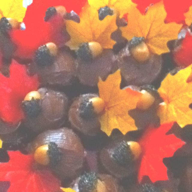 Fall cupcake chocolate cupcake fake leaf glued to tooth pick Carmel  in dipped melted chocolate and sprinkles so good!!!