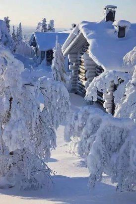 Белым снегом замело... #зима #снег #домики | Живописные ...
